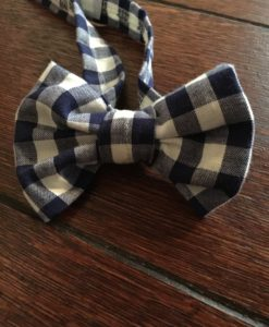 Blue White Boys Bow Tie